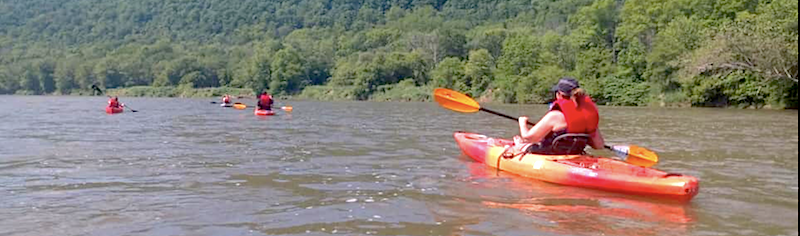a smattering of brightly-colored kayaks set out on a river with trees in the distance