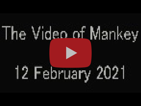 The Video Of Mankey - 12 February 2021