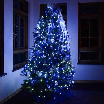 Blue Peace Tree