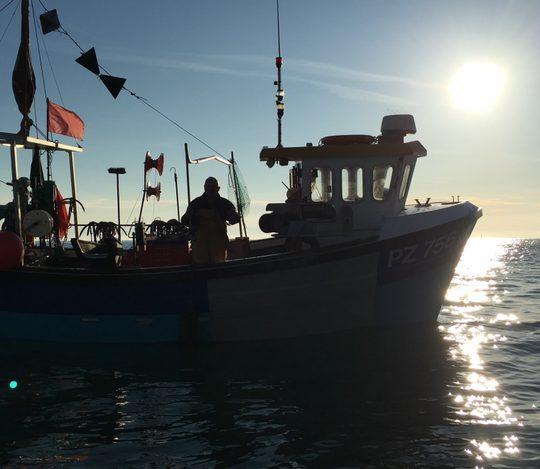 Fishing vessel in Torbay