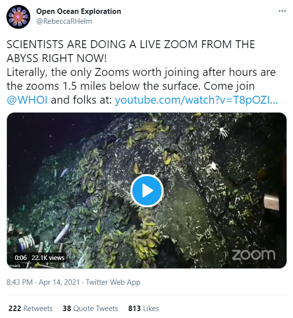 A tweet featuring a video of deep-sea vents