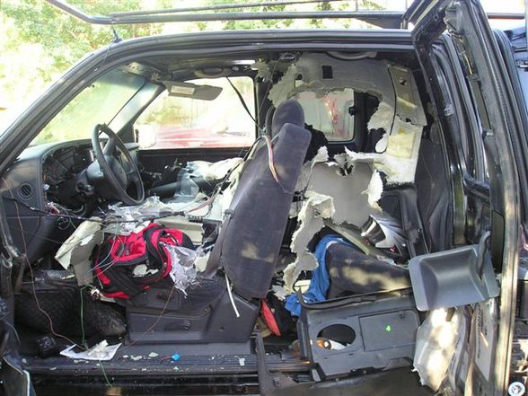 vehicle damage from trapped bear